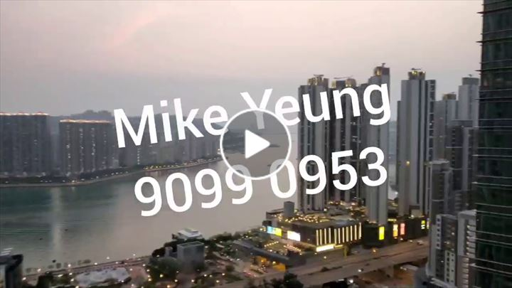 Mike Yeung 楊振鵬