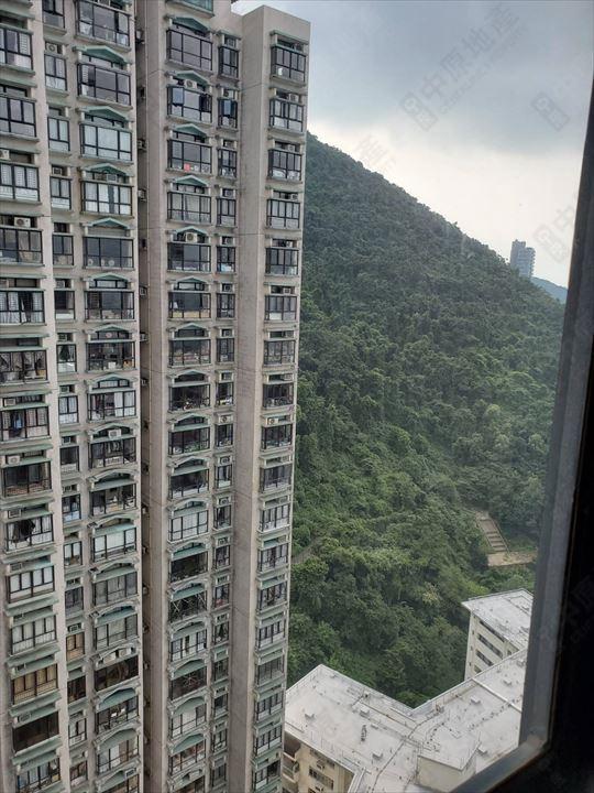 窗外景观 - 由睡房