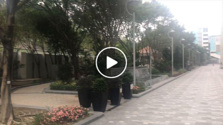 Windy Ku 古玉清