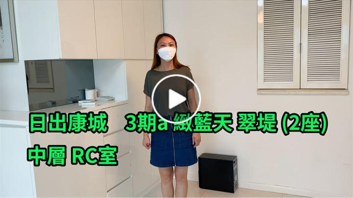 Niki Lau 劉嘉燕