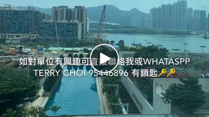 Terry Choi 蔡德傳