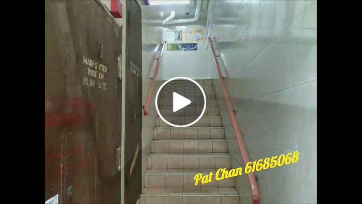 Pat Chan 陳潔貞