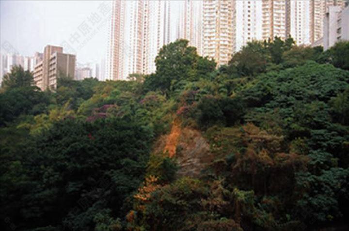 附近環境 - 周邊景觀