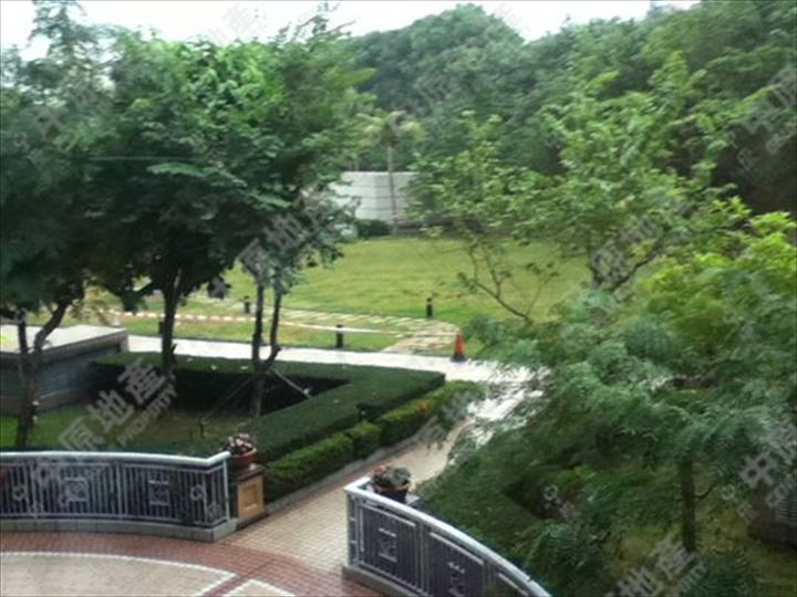 窗外景觀 - 園景
