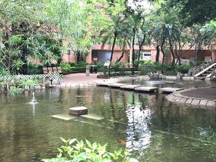 附近環境 - 公園